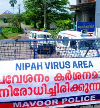 Vírus-Vírus Nipah